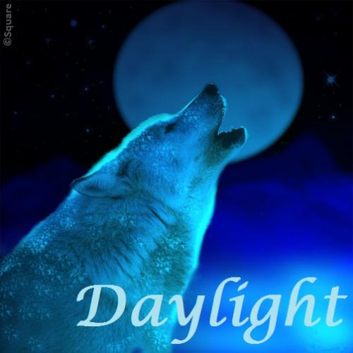 Daylight - Renesmees true story [-afgelopen-]