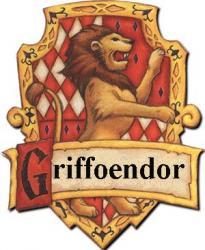 In welke Harry Potter afdeling zit jij?