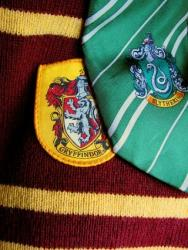 It's not over~ the new Generation of Hogwarts.