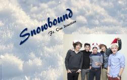 snowbound    one direction