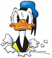 welk donald duck figuur ben jij?