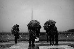 Shadow of Doubt • Zayn Malik