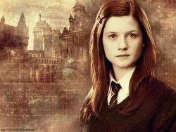 I will wait for you ( Ginny Wemel & Harry Potter)