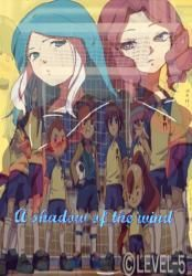 A shadow of the wind || Inazuma eleven ||